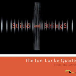 Joe Locke - Sticks and Strings